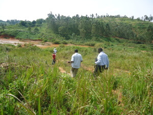 The Pathway through the Congo artisanal gold fields